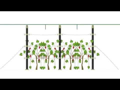 O2-Vertical Garden & Plant Cordon system-Parts /Water Connection
